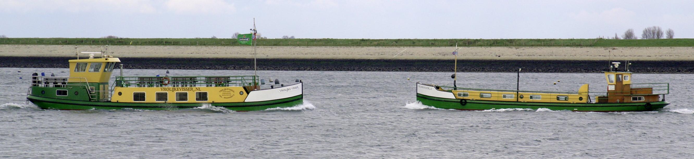 bootvissen Oosterschelde dagje vissen met de Salamander2 of de Vrolijke Visser Dagje uit Vissen of Sportvissen oosterschelde